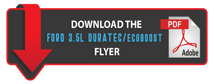 Download Ford Ecoboost/Duratec PDF
